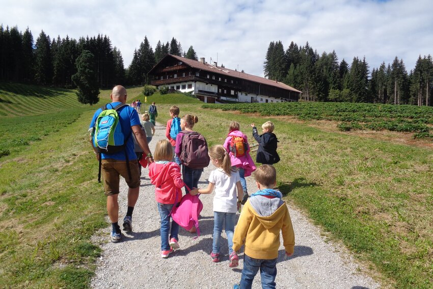 Hiking tour at Juppi Zauberwald in Reith im Alpbachtal
