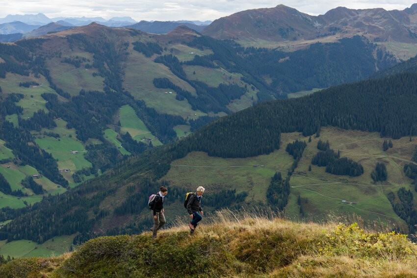 Hiking tour to Wiedersbergerhorn in September